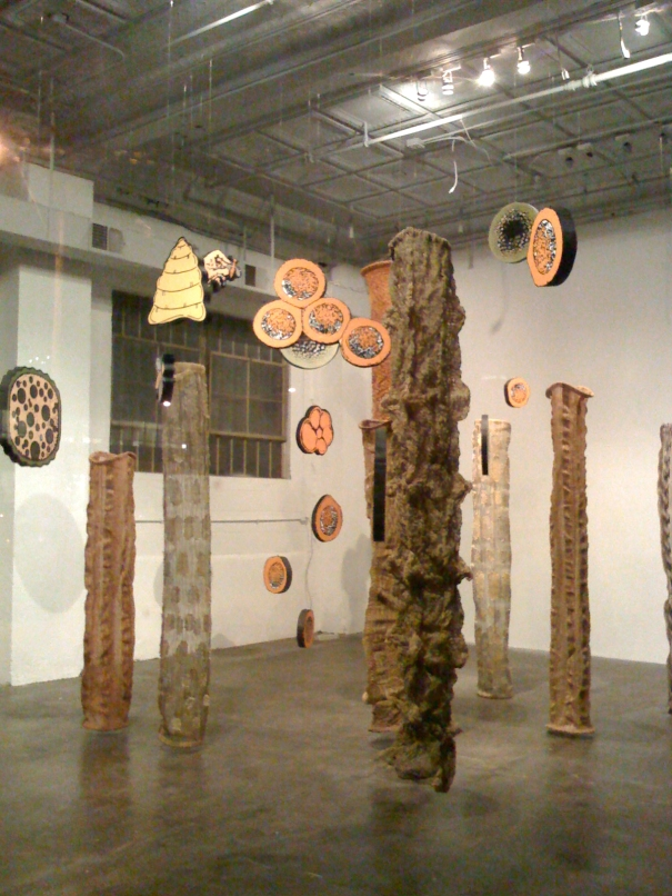 Cocoon Gallery. Kansas City. 2009. In collaboration with Jay Kreimer.